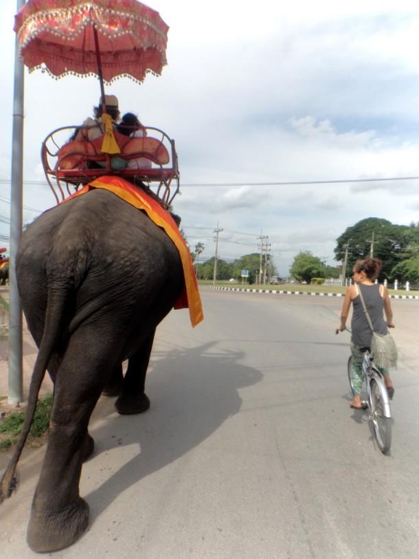 1 ayutthaya fietsen