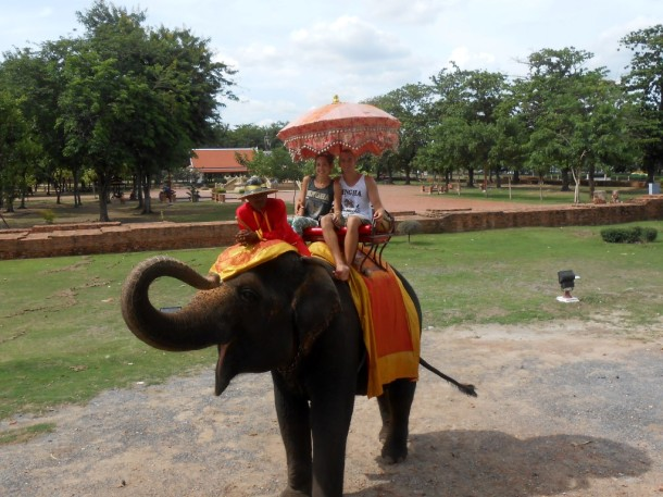 13 ayutthaya olifanten